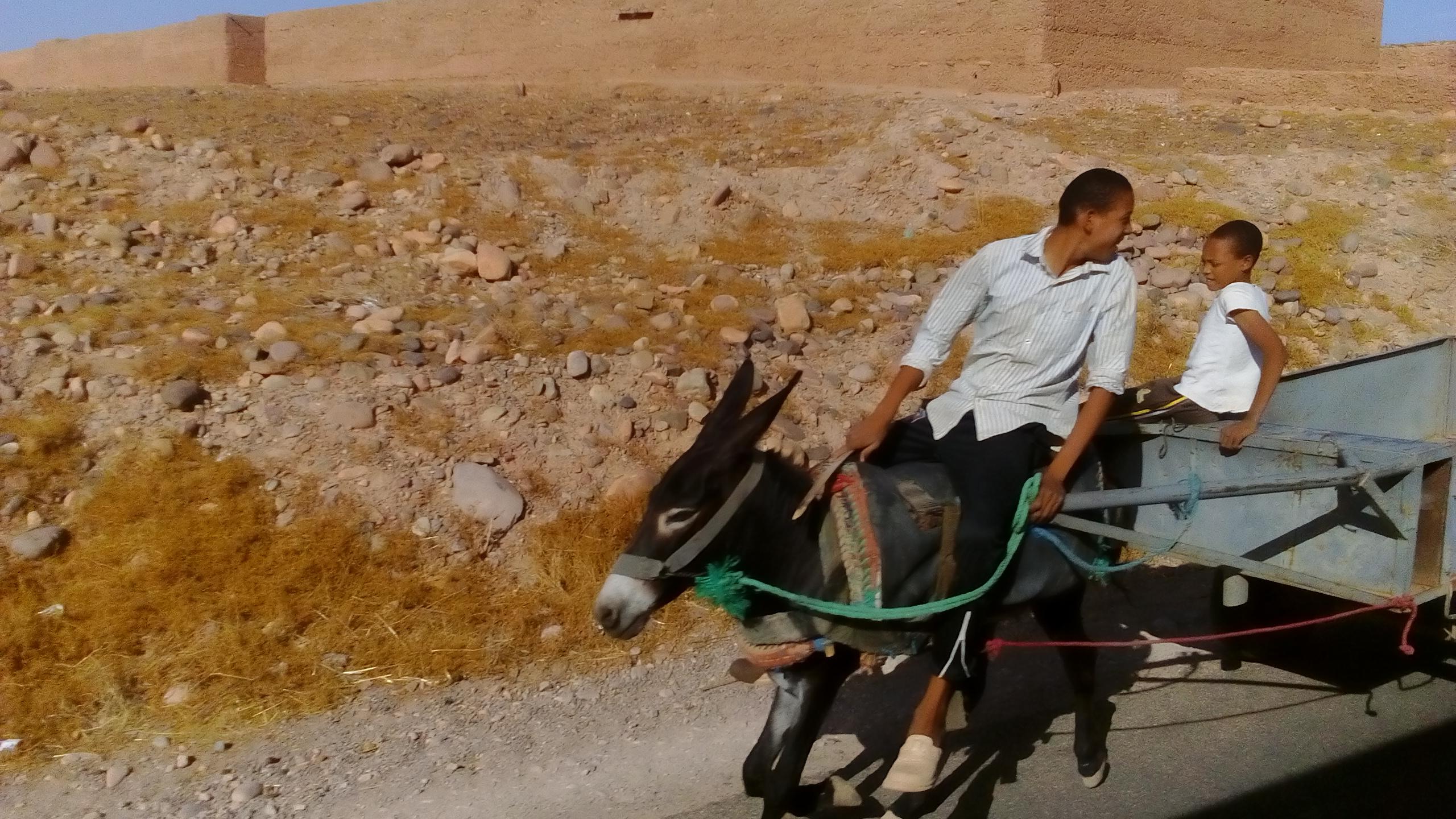 MarokoNaOsiolkuDSC_0482